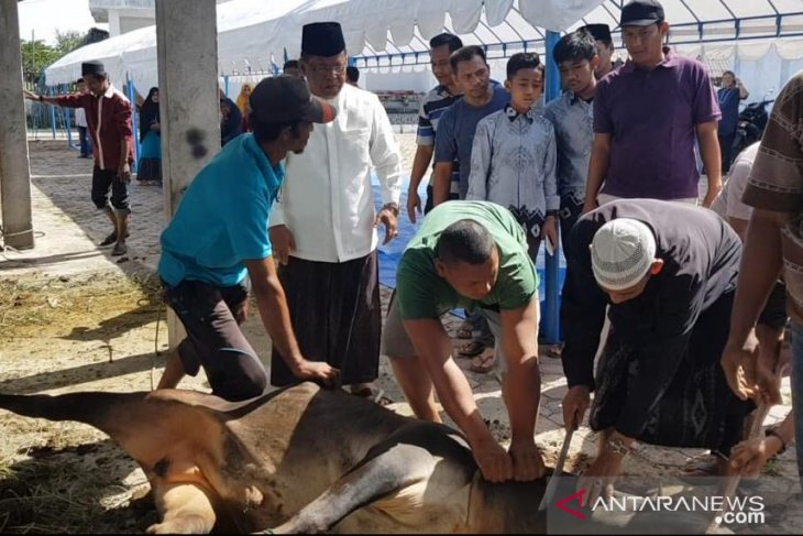 Pegawai Pemko Banda Aceh kurban 100 ekor