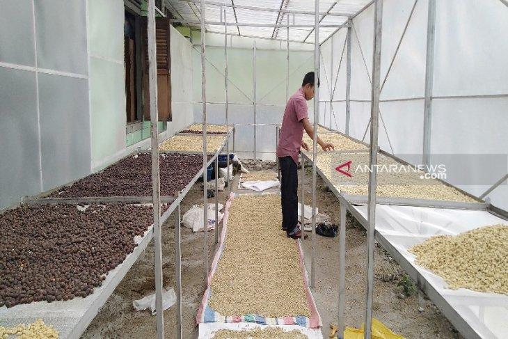 Kehadiran KSU Kopi Mandailing Jaya untuk stabilkan harga kopi