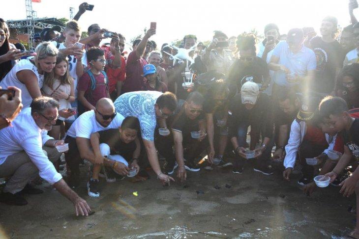 Pemkot Denpasar lepas 100 tukik di Pantai Segara