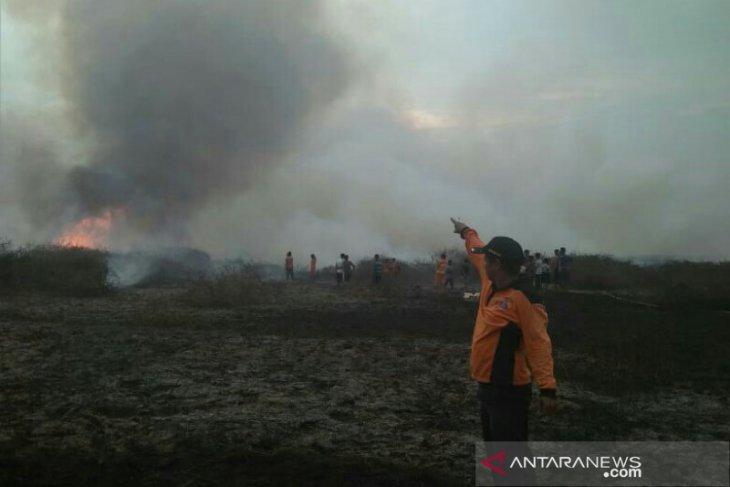 Dua pekan 25 hektar lahan terbakar