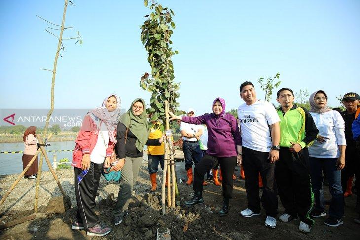 Wali Kota Risma tanam 50 ribu pohon di Bozem Medokan Sawah