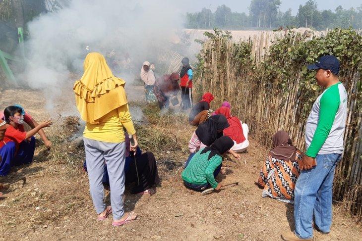 Padat Karya Tunai di Desa Jebak  Kabupaten Batanghari