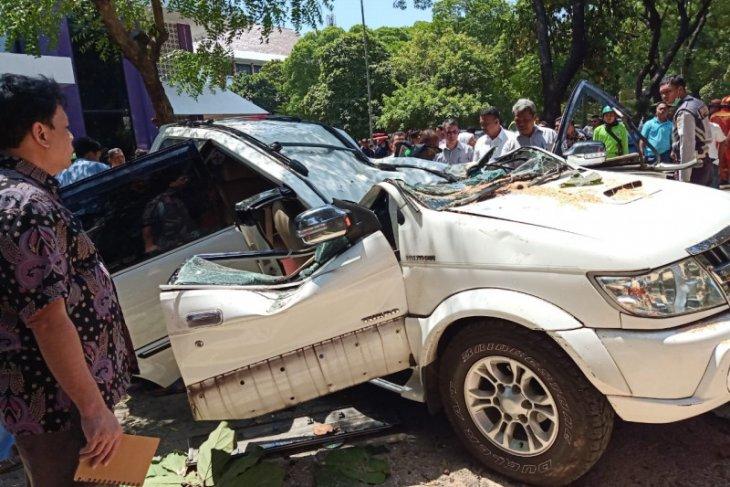 Satu orang tewas dalam insiden pohon tumbang di Universitas Pancasila