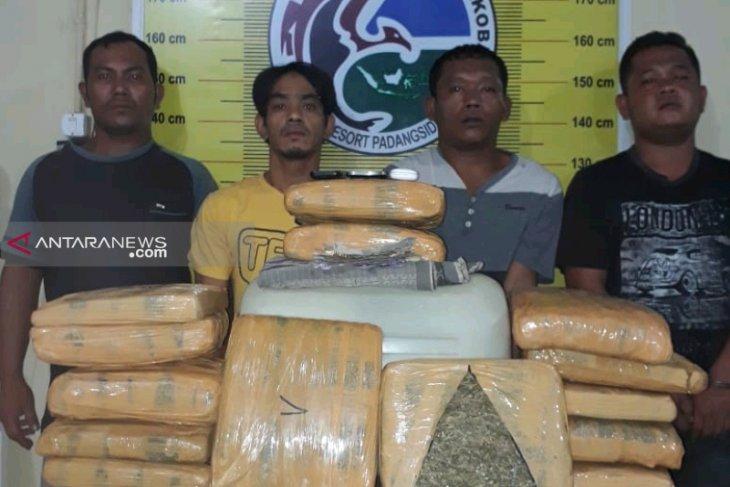 Polres Padangsidimpuan gagalkan peredaran 15 kg ganja