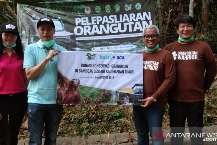 Yayasan BOS -BCA lepasliarkan orangutan di Hutan Kehje Sewen