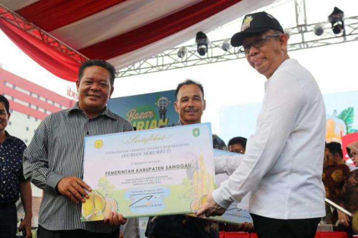 Sanggau mendominasi festival durian bumi khatulistiwa