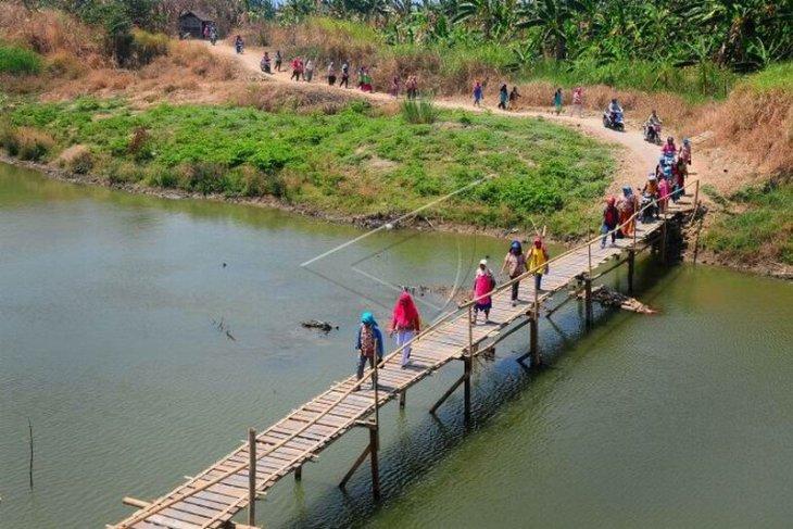 Jembatan kayu penghubung desa