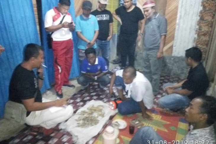Polisi tangkap warga pengumpul tulang harimau