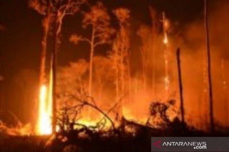 BPBD: 138 titik panas terdeteksi di Bangka Belitung