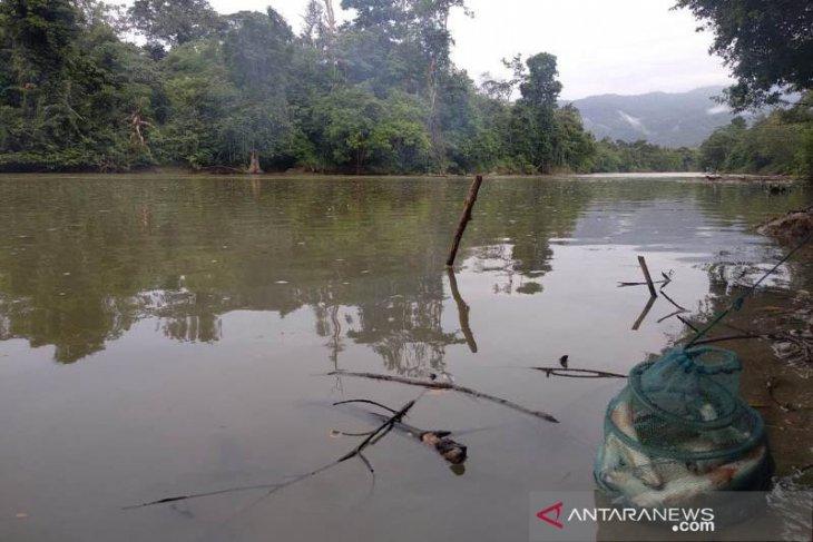 Masyarakat Samar Kilang mulai larang penangkapan burung dan ikan