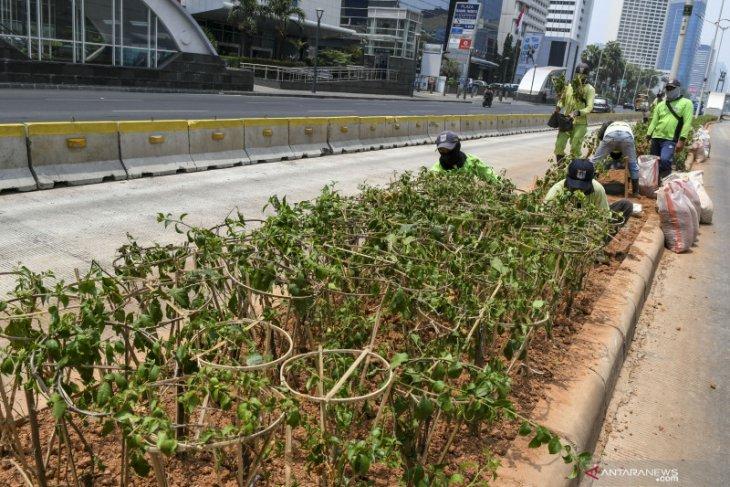 Kamis pagi, Jakarta tempati posisi ketiga udara terburuk di dunia