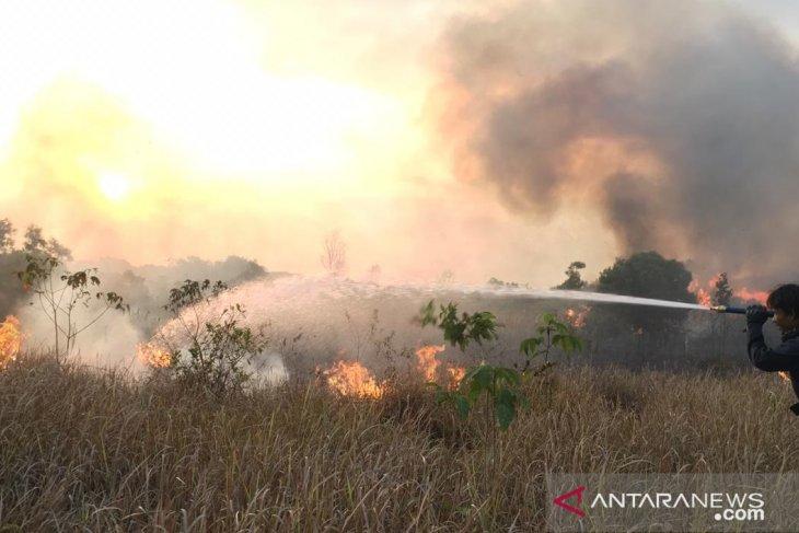 PMI siagakan personel waspadai kebakaran hutan di kabupaten Banjar meluas