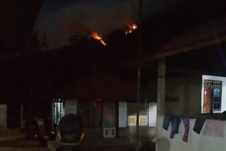 Terbakar, hutan di lereng Gunung Agung