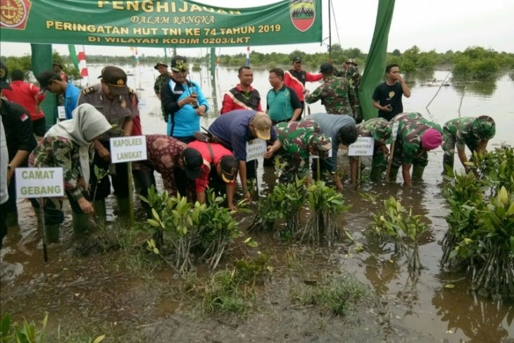 HUT TNI ke-74 Wakil Bupati Langkat tanam 5.000 pohon mangrove
