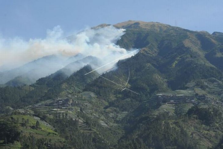 Kebakaran hutan gunung Merbabu