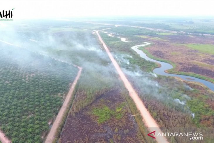 Land clearance for plantations causal to Indonesia's forest fires