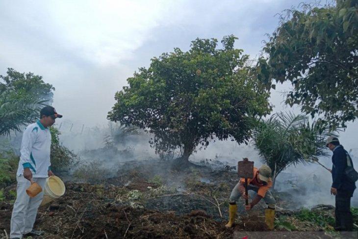 Tim gabungan padamkan kebakaran lahan sawit di Mukomuko