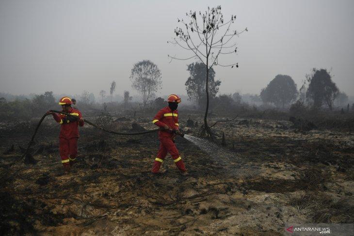 15 hot spots detected in Riau: BMKG