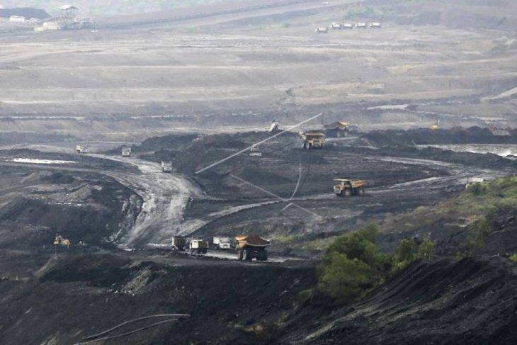Kinerja Bukit Asam terkerek berkat garap pasar ekspor
