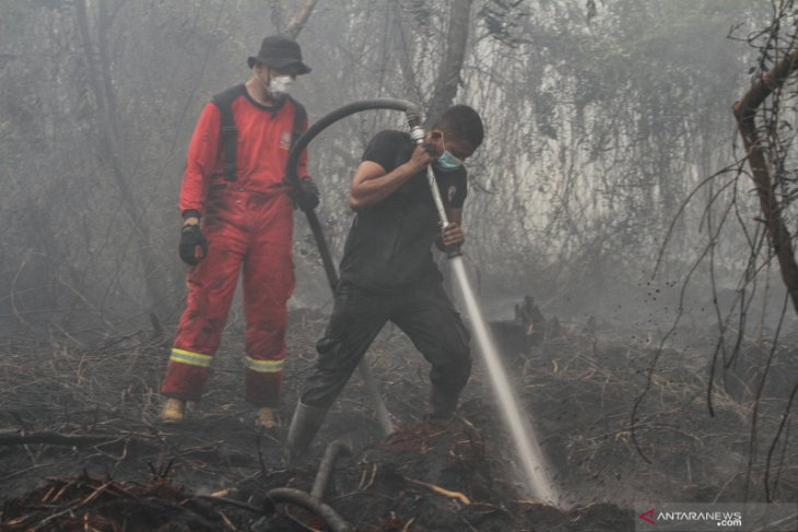 29,039 personnel combating Indonesia's forest, land fires: BNPB