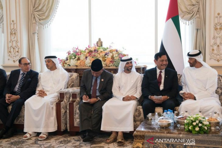 UAE to fulfill investment plan in Indonesia before 2019-end: Minister