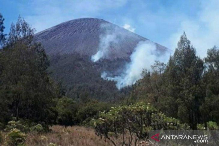 Kebakaran hutan terjadi di jalur pendakian Gunung Semeru