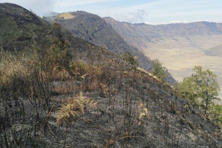 Pemadaman kebakaran di jalur pendakian Gunung Semeru terkendala medan sulit
