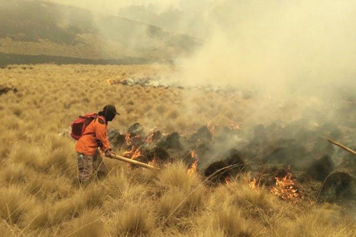 Kebakaran di Gunung Semeru tersisa dua titik api