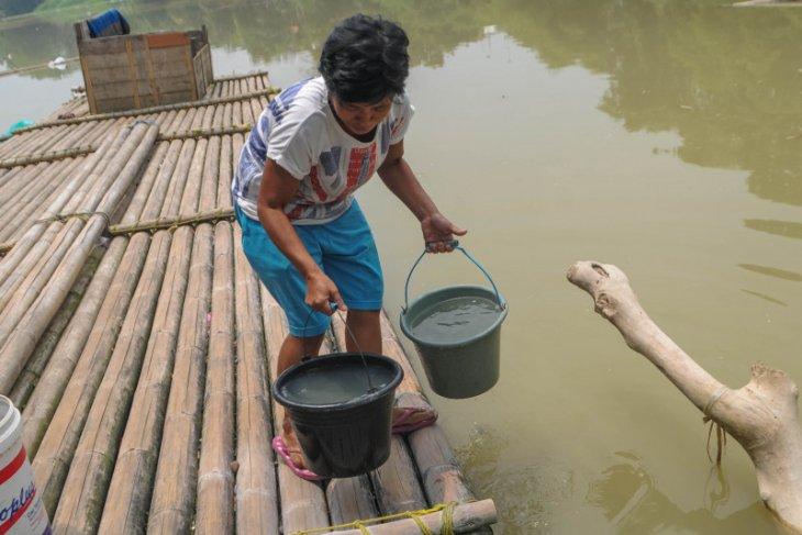 Akibat kemarau, krisis air bersih di Lebak meluas