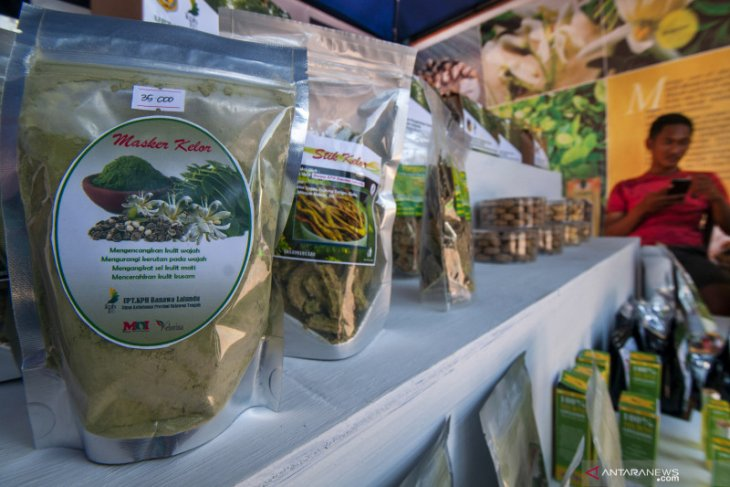 UKM di Bangka Barat kembangkan produk berbahan daun kelor