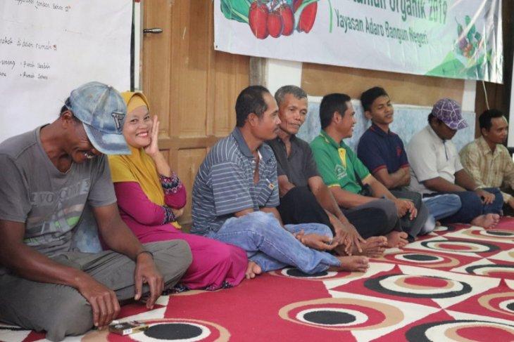 Pertanian organik solusi pertanian berkelanjutan