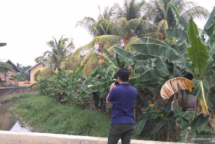 Drainase rawan genangan di Kota Jambi bakal dinormalisasi