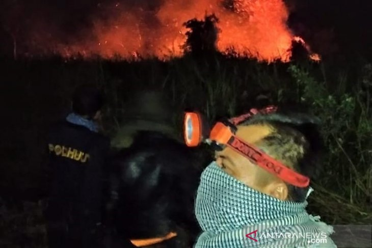 Cagar Alam Danau Dusun Besar Bengkulu terbakar