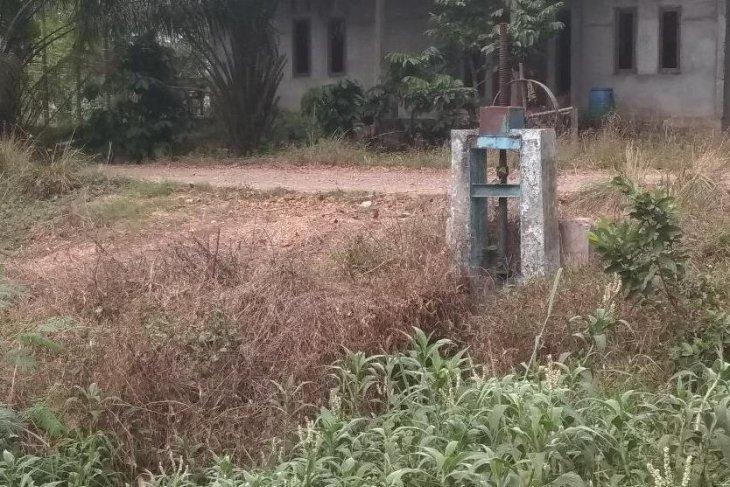 Pintu irigasi dikepung rumput