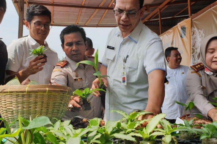 Produk hortikultura  Sumut tembus pasar ekspor