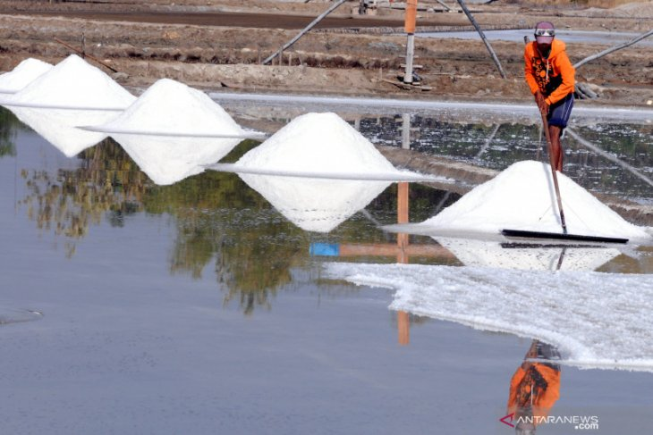 BPPT builds pilot project to produce industrial salt