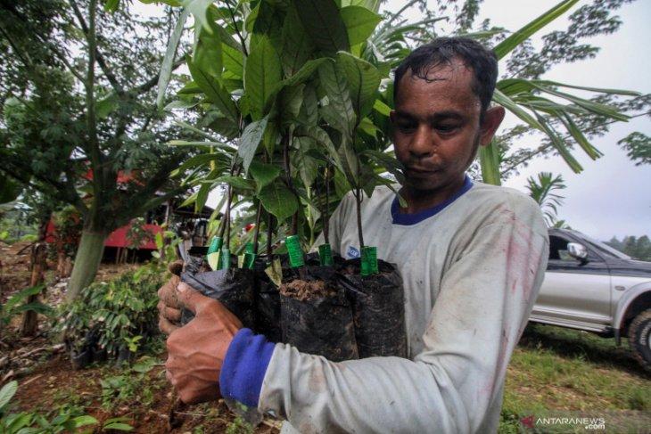 Lahan eks kombatan GAM gagal dilaksanakan di Aceh Jaya