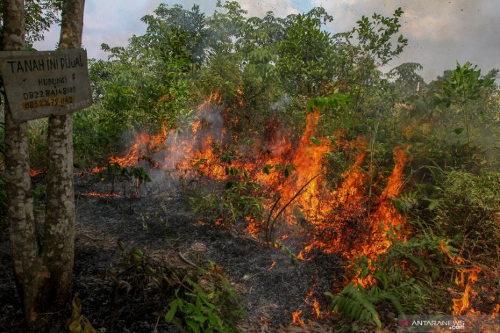 Tidak unsur kesengajaan kebakaran lahan Petung-Giripurwa