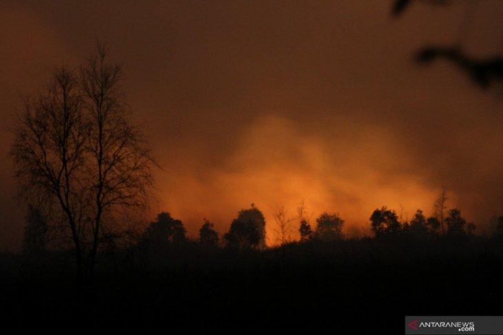 131 titik panas masih terdeteksi di Kalimantan Selatan