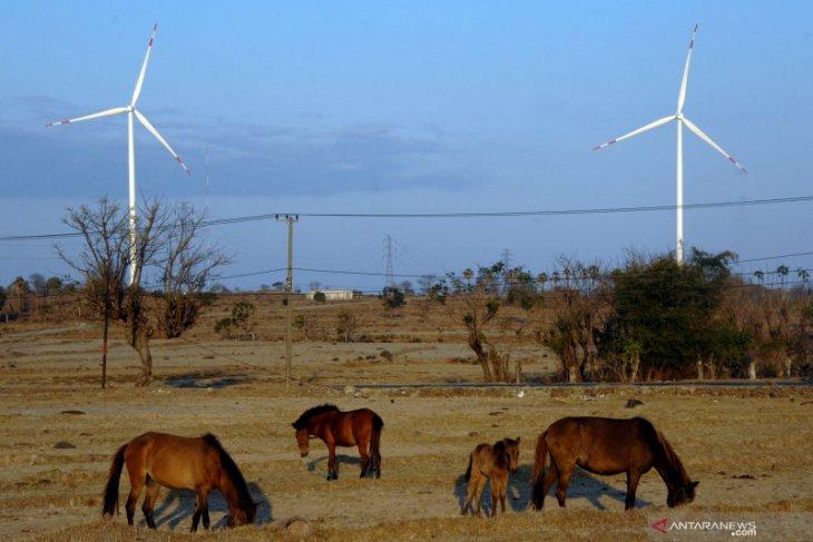 Pembangkit tenaga angin diprediksi bertambah usai COVID-19