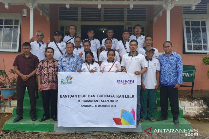 PLN Kalbar bantu 51.000 bibit lele tingkatkan kesejahteraan warga Sanggau