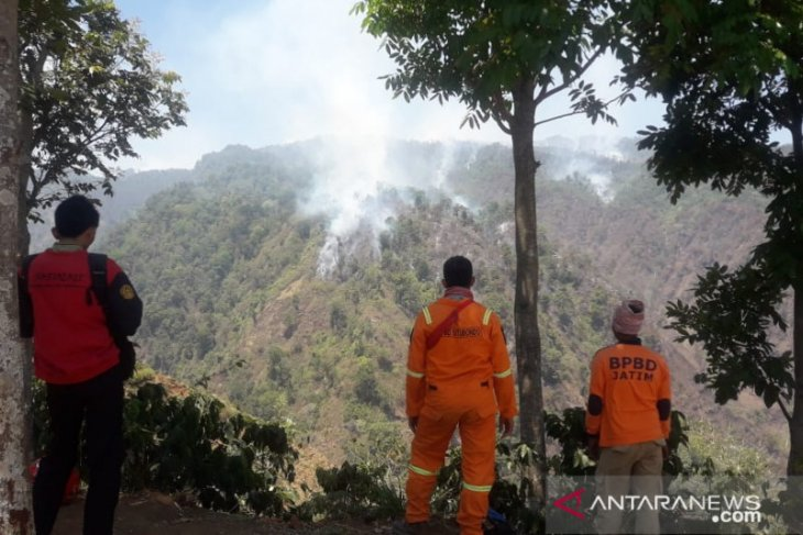 Climbing activities on Mount Argopuro stalled by wildfire