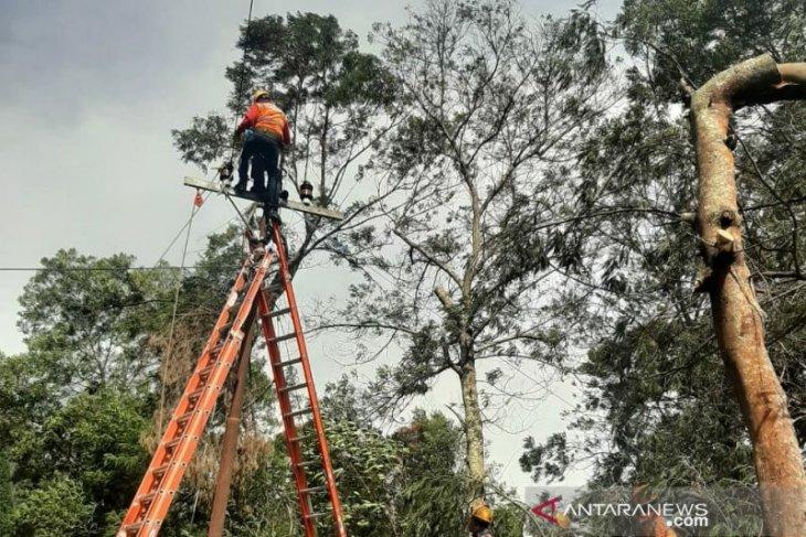 PLN Jatim minta masyarakat laporkan potensi bahaya saat musim hujan