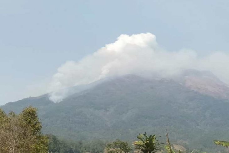 Joint forest fire-fighting team deployed on Mount Sumbing
