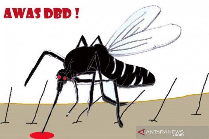 Health ministry confirms 110,921 dengue fever cases until Oct 2019