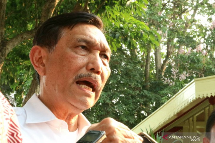 Nickel export restriction to help local industries: Luhut