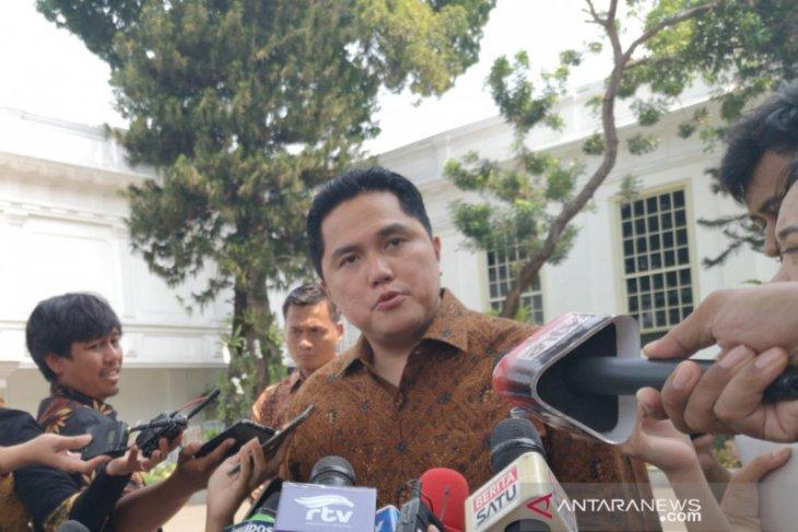 Menteri BUMN umumkan pembagian tugas wakil menteri