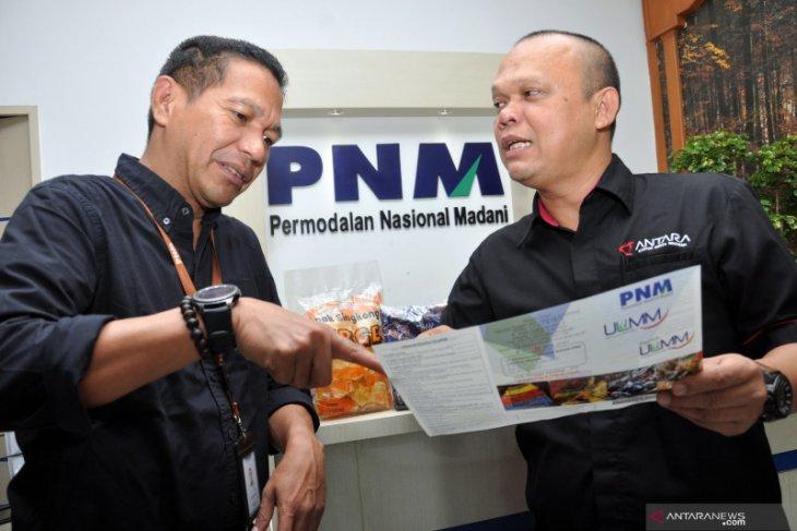 Pengembangan PNM usaha kecil mikro Mekaar
