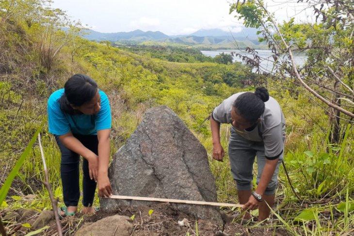 Arkeolog temukan papan batu megalitik dan menhir di Jayawijaya Papua