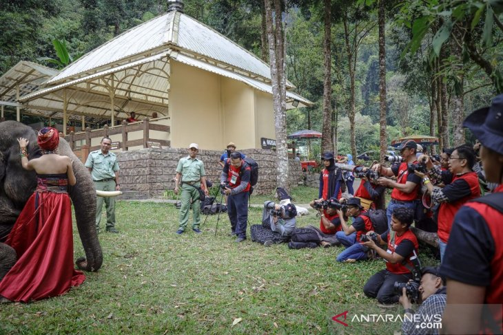 Taman Safari akan gelar puncak acara lomba foto satwa IAPC 2019 di Bogor